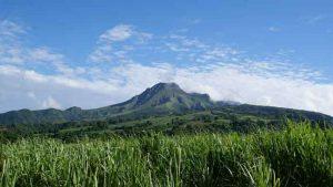 Natur pur beim karibik-urlaub auf Martinique
