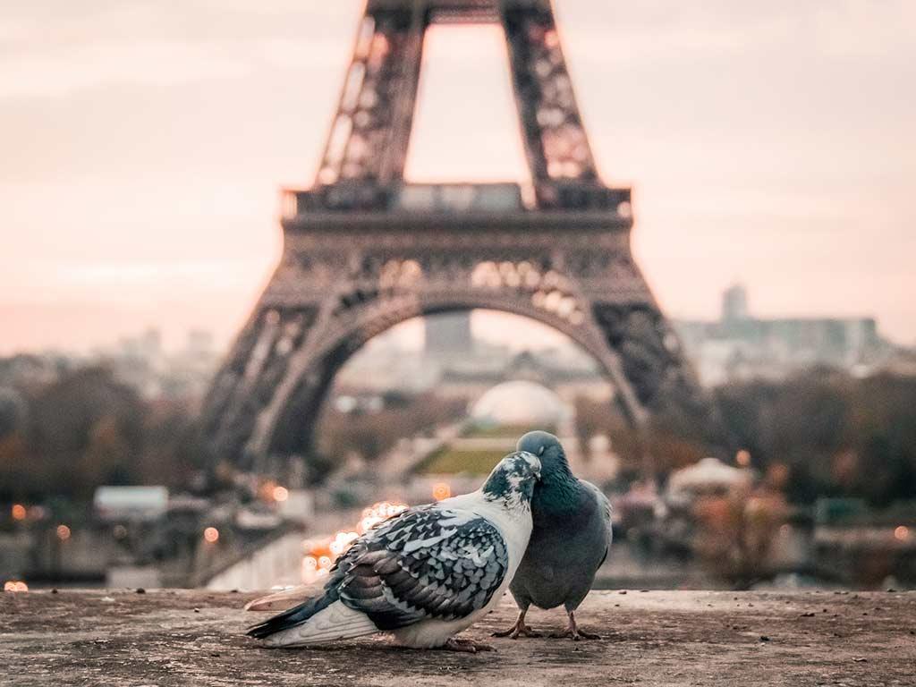 Ideal für den Pärchenurlaub 2020: Paris