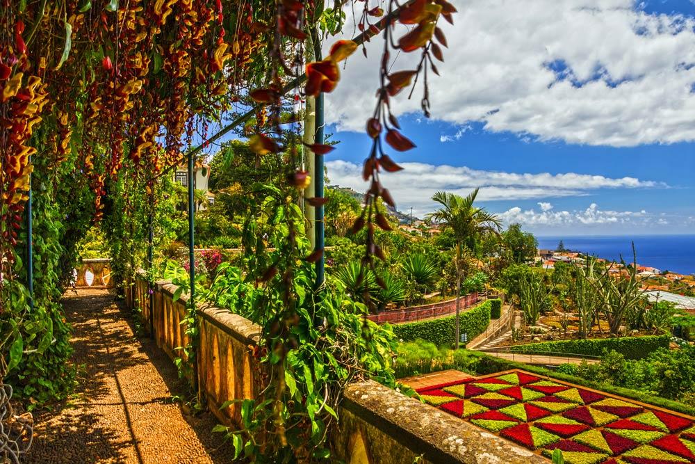 Eine pure Blumenpracht: Madeira im Frühling